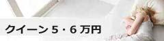 5~6万円クイーンベッド